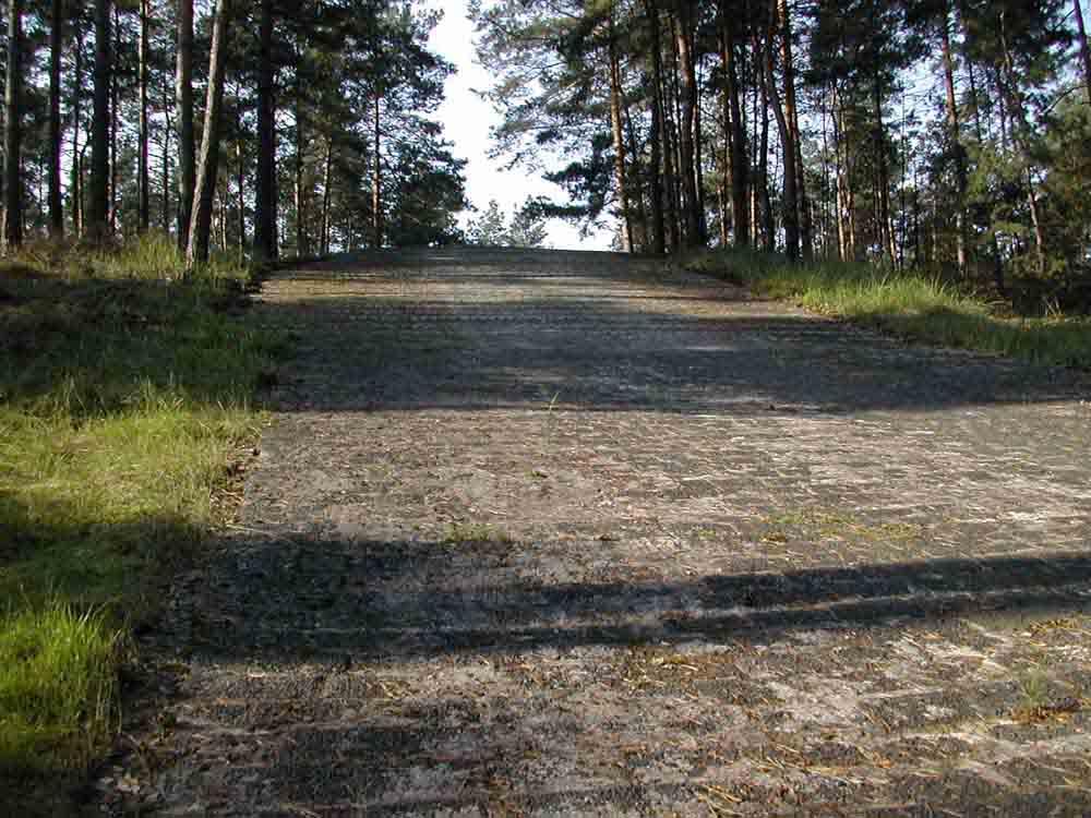 Betonkuppe*): Fahrbahn: unten Schlackesteinpflaster, oben Granitpflasterstreifen in Beton, Steigung max. 28 %, Breite: 7 m, Länge: 70 m