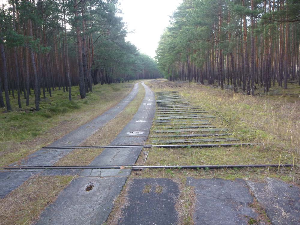 Ein Gleisübergang (Normalspurweite 1435 mm) mit einem niveaugleichen und einem etwa 7 cm frei liegenden Gleiskopf. Unmittelbar dahinter schließen sich über 21 m Länge 34 Bahnschwellen (Abstand ca. 35-45 cm) mit ebenfalls etwa 7 cm Freistand an.